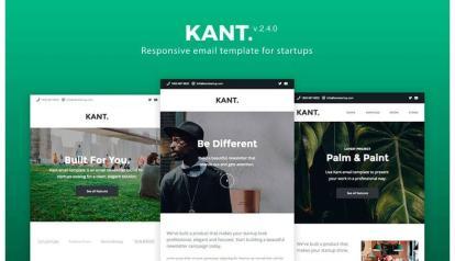 Newsletters con Responsive Design